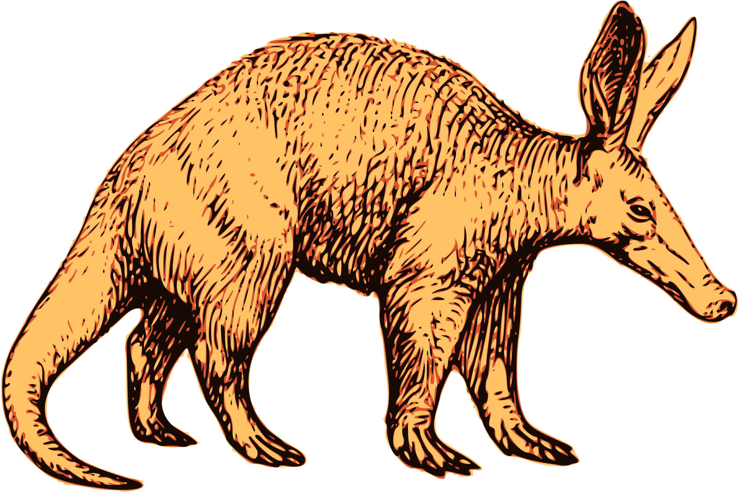 Aardvark clipart #20, Download drawings