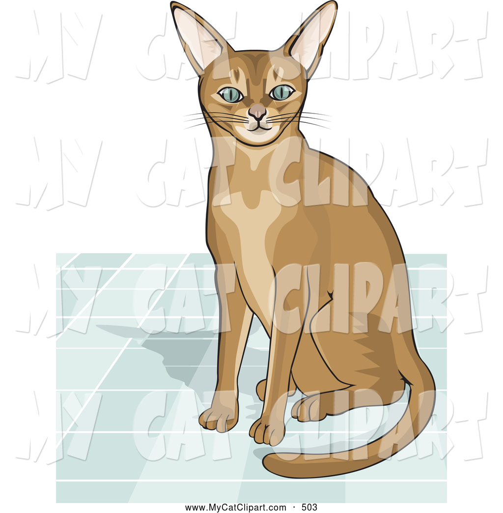 Abyssinian Cat clipart #11, Download drawings