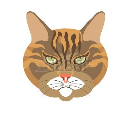 Abyssinian Cat clipart #15, Download drawings