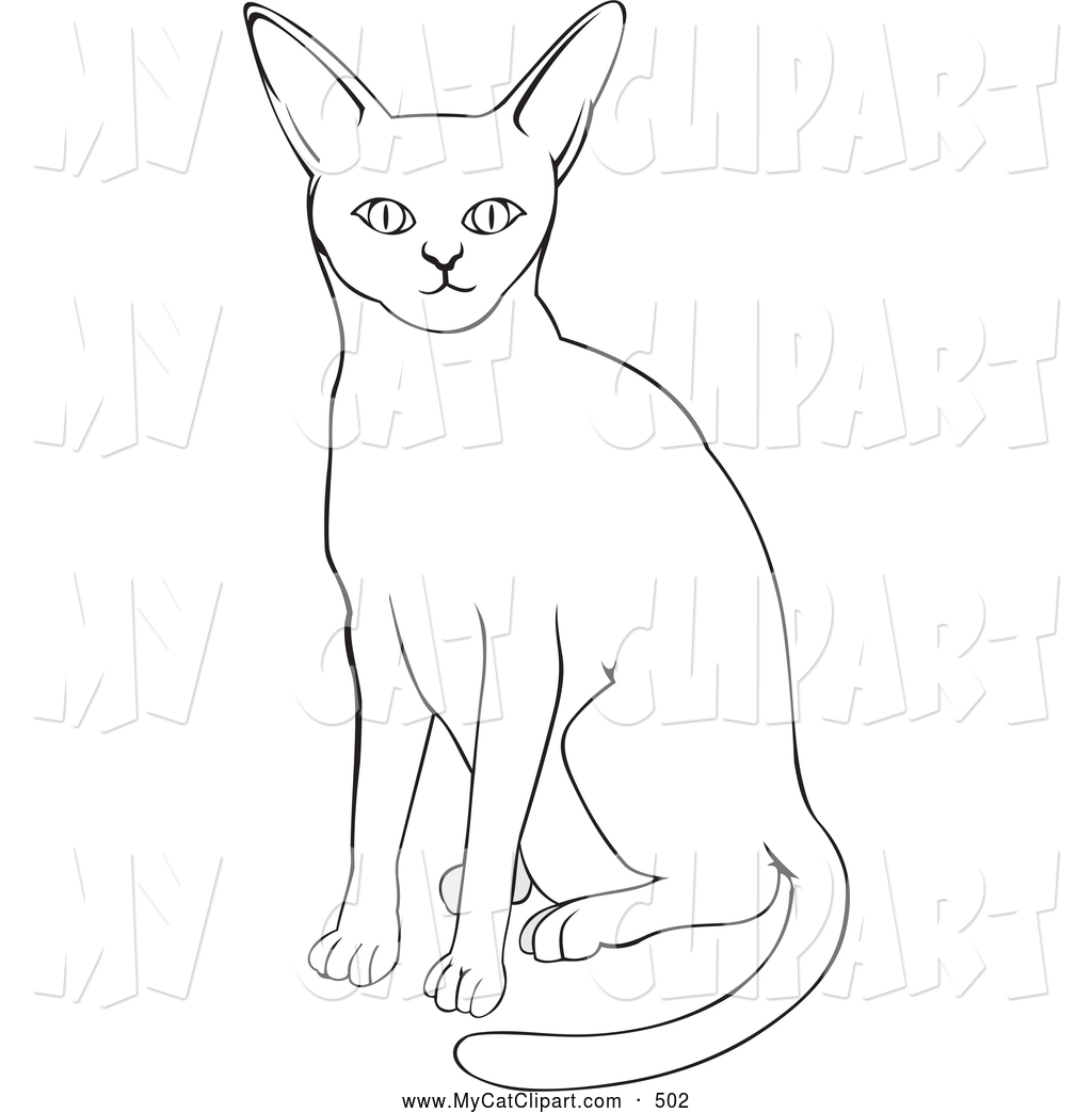 Abyssinian Cat clipart #3, Download drawings