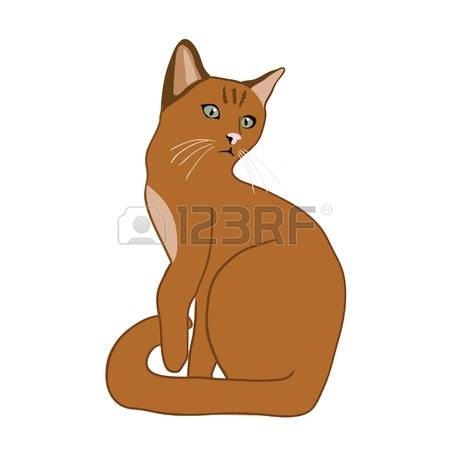 Abyssinian Cat clipart #8, Download drawings