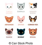 Abyssinian Cat clipart #6, Download drawings