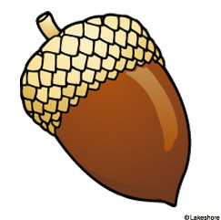 Acorn clipart #19, Download drawings