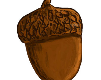 Acorn clipart #3, Download drawings