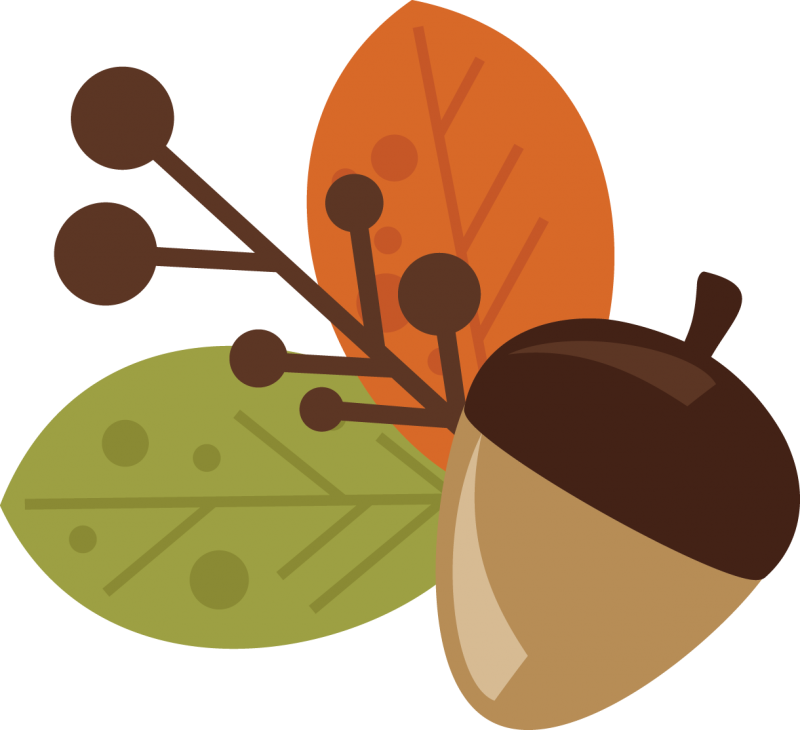 Acorn svg #104, Download drawings