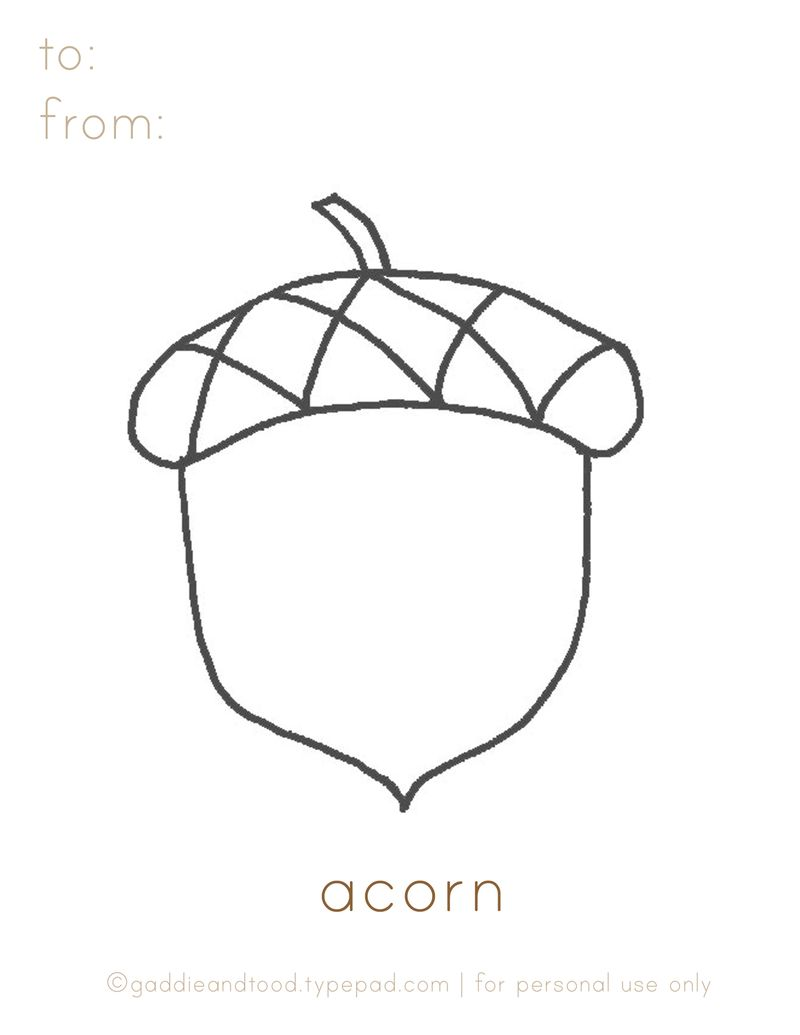 Acorn coloring #9, Download drawings