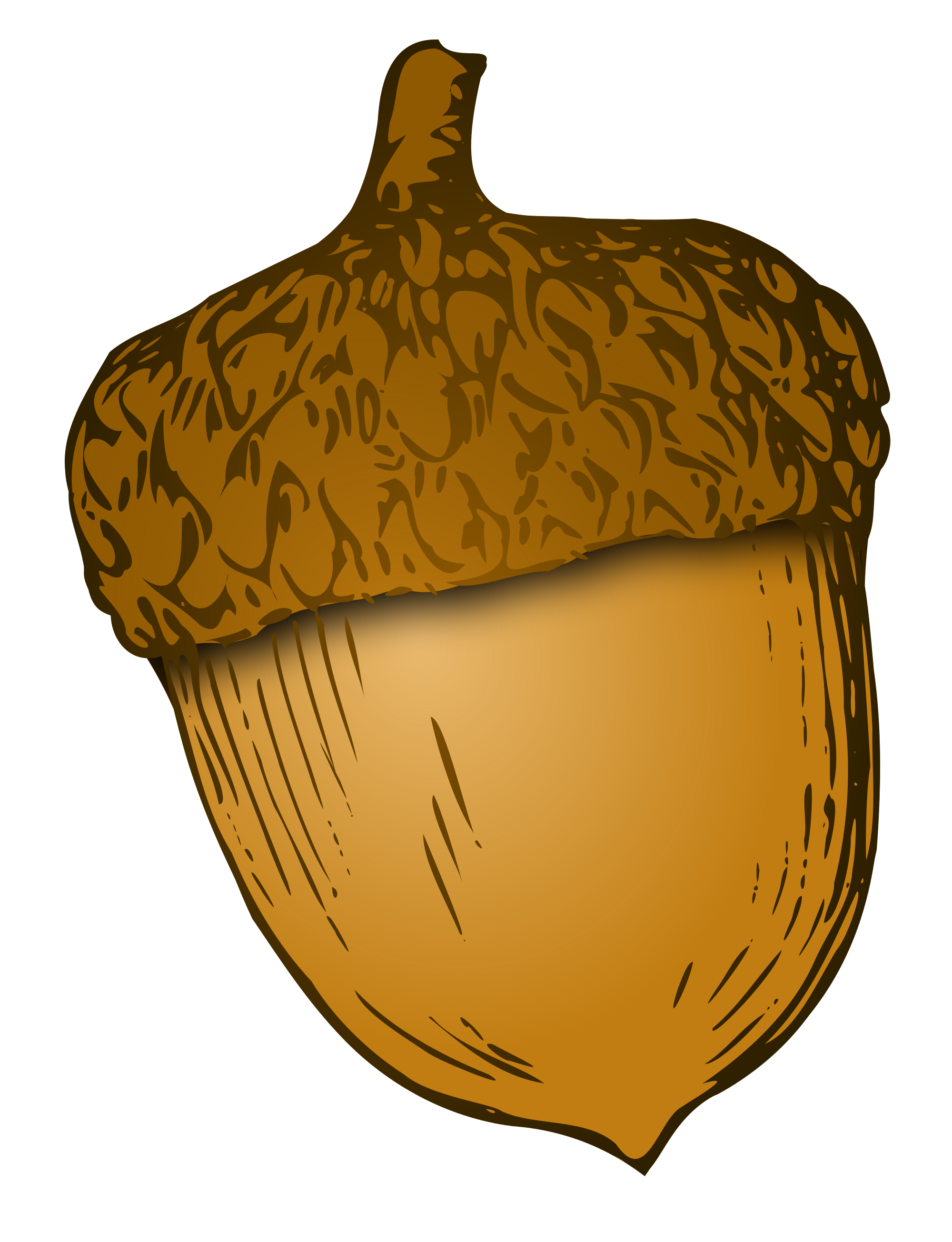Acorn svg #103, Download drawings