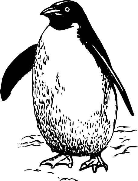 Adelie Penguin clipart #4, Download drawings