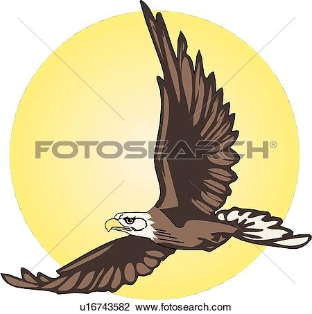 Adler clipart #11, Download drawings