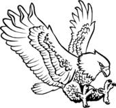 Adler clipart #8, Download drawings