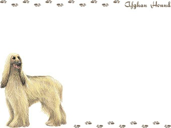 Afghan Hound clipart #18, Download drawings