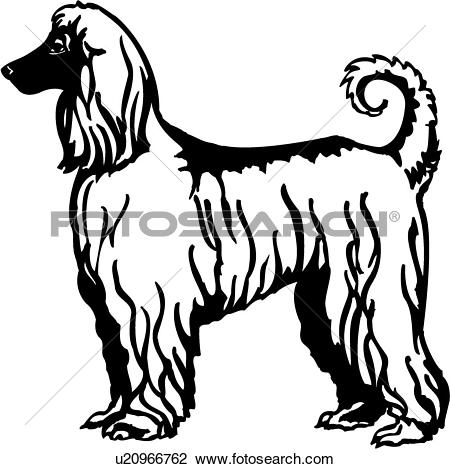 Afghan Hound clipart #8, Download drawings