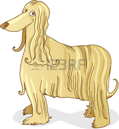 Afghan Hound clipart #5, Download drawings