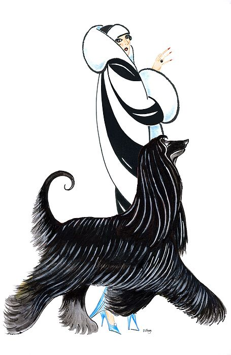 Afghan Hound svg #10, Download drawings