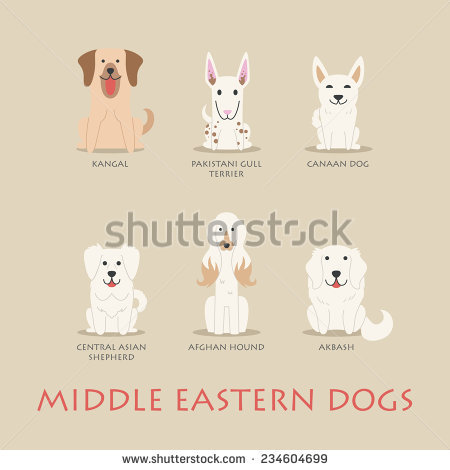 Afghan Hound svg #6, Download drawings