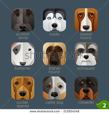 Afghan Hound svg #17, Download drawings