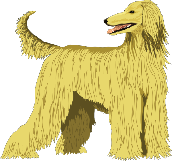 Afghan Hound svg #9, Download drawings