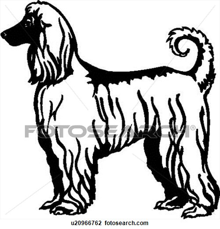 Afghan Hound svg #11, Download drawings
