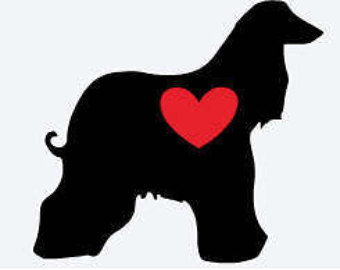 Afghan Hound svg #18, Download drawings