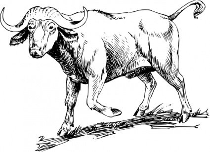 African Buffalo clipart #4, Download drawings