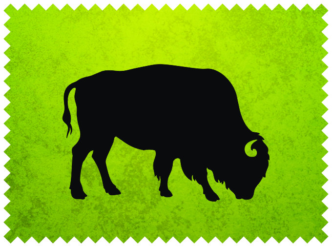 Buffalo svg #231, Download drawings