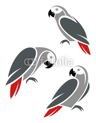African Grey Parrot clipart #7, Download drawings