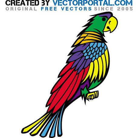 African Grey Parrot clipart #15, Download drawings