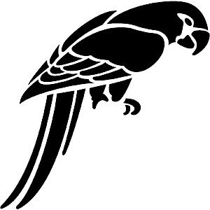 African Grey Parrot svg #8, Download drawings