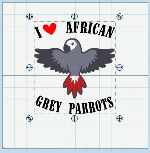 African Grey Parrot svg #19, Download drawings