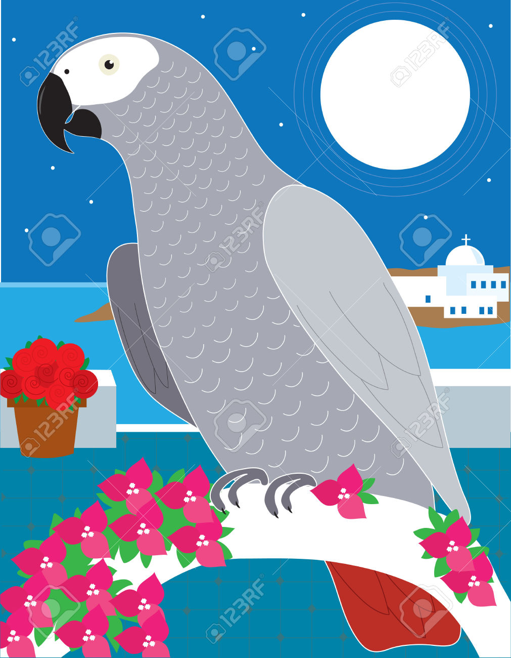 African Parrot clipart #5, Download drawings