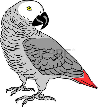 African Parrot clipart #4, Download drawings