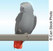 African Parrot clipart #6, Download drawings