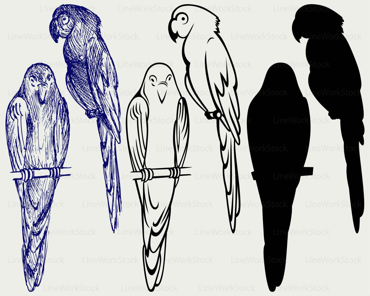 Budgie svg #4, Download drawings