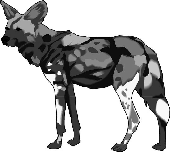 African Wild Dog clipart #15, Download drawings