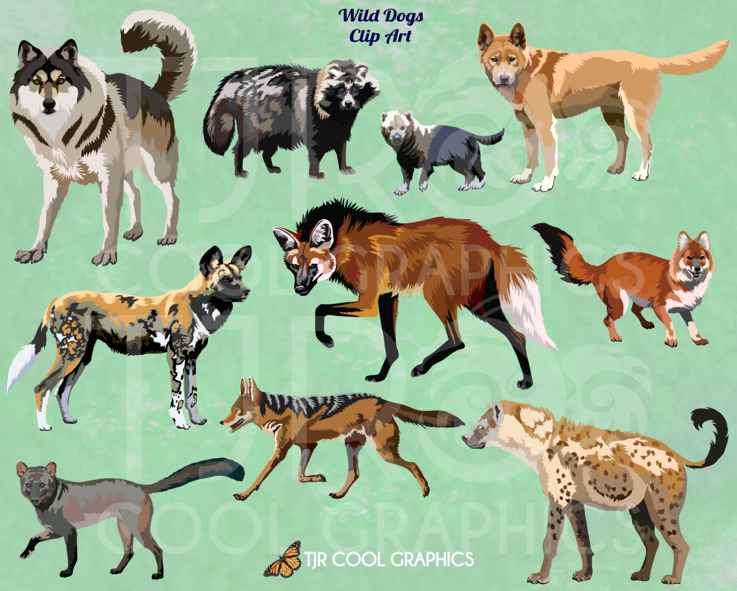 African Wild Dog clipart #19, Download drawings