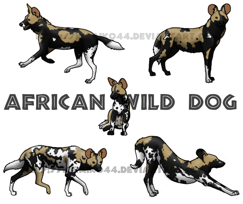 African Wild Dog clipart #18, Download drawings