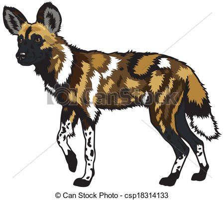African Wild Dog clipart #3, Download drawings