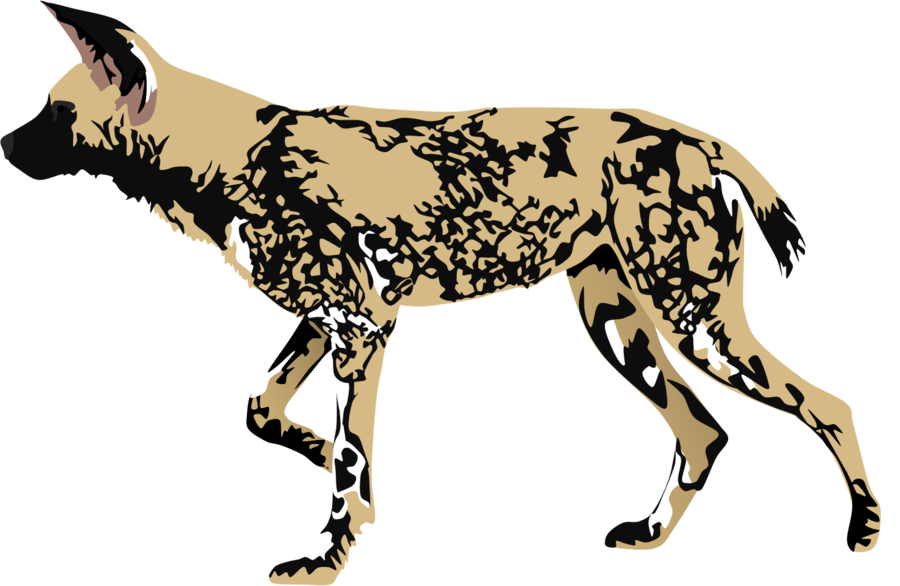 African Wild Dog clipart #20, Download drawings