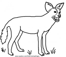 African Wild Dog coloring #16, Download drawings