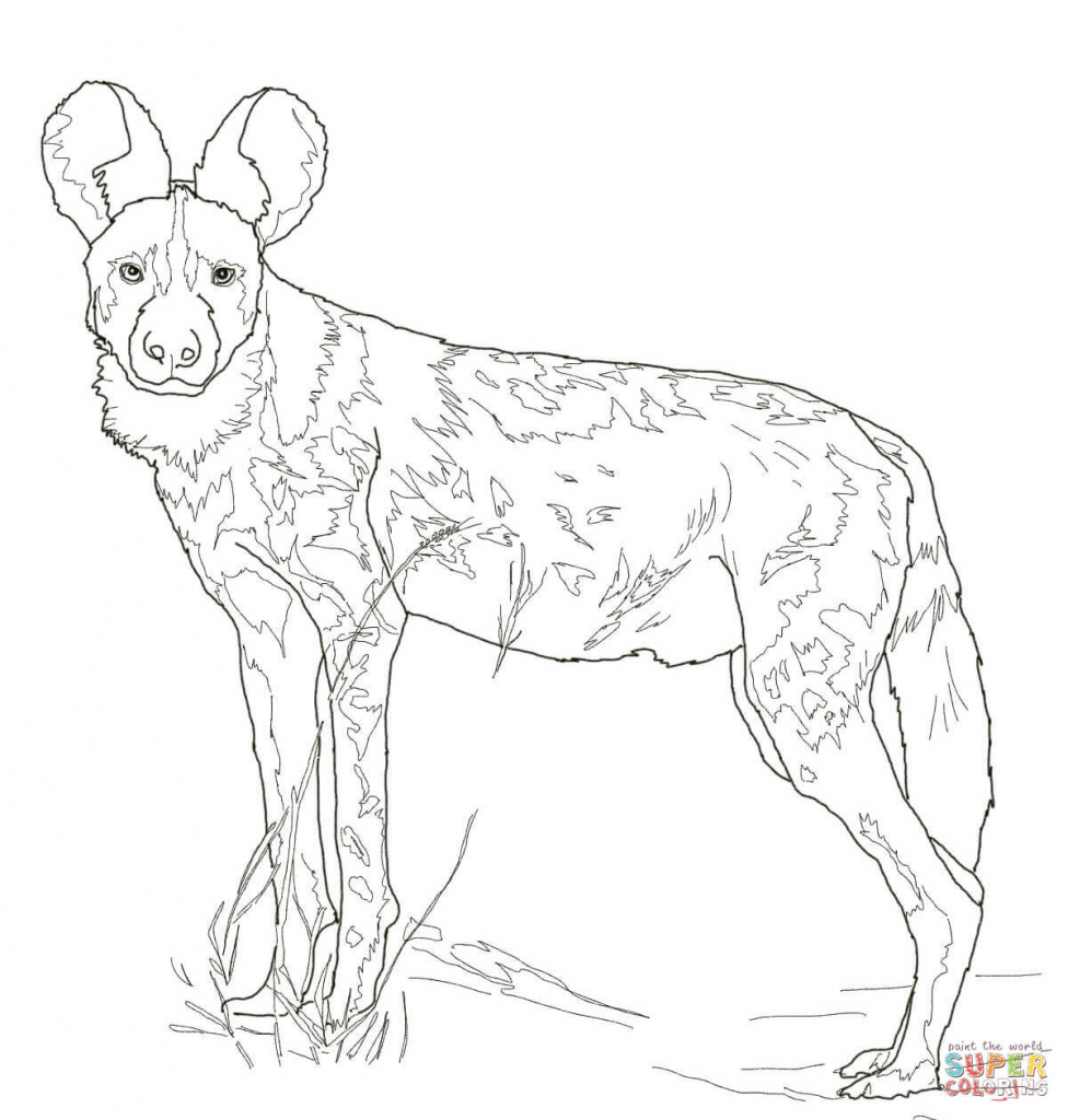 African Wild Dog coloring #14, Download drawings