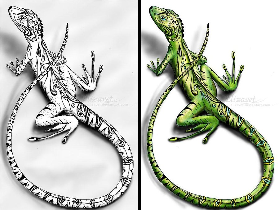 Agama coloring #2, Download drawings