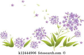 Agapanthus clipart #15, Download drawings