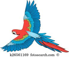 Agapornis clipart #13, Download drawings