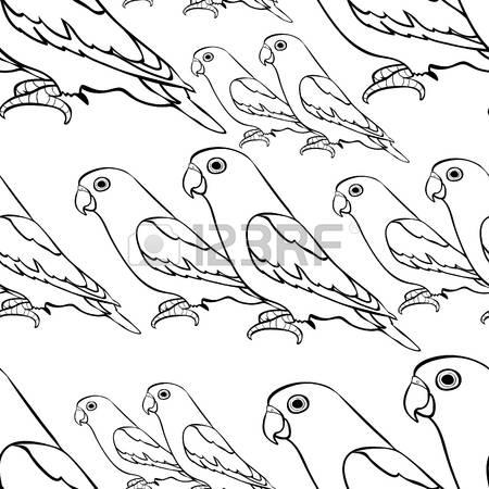Agapornis coloring #7, Download drawings