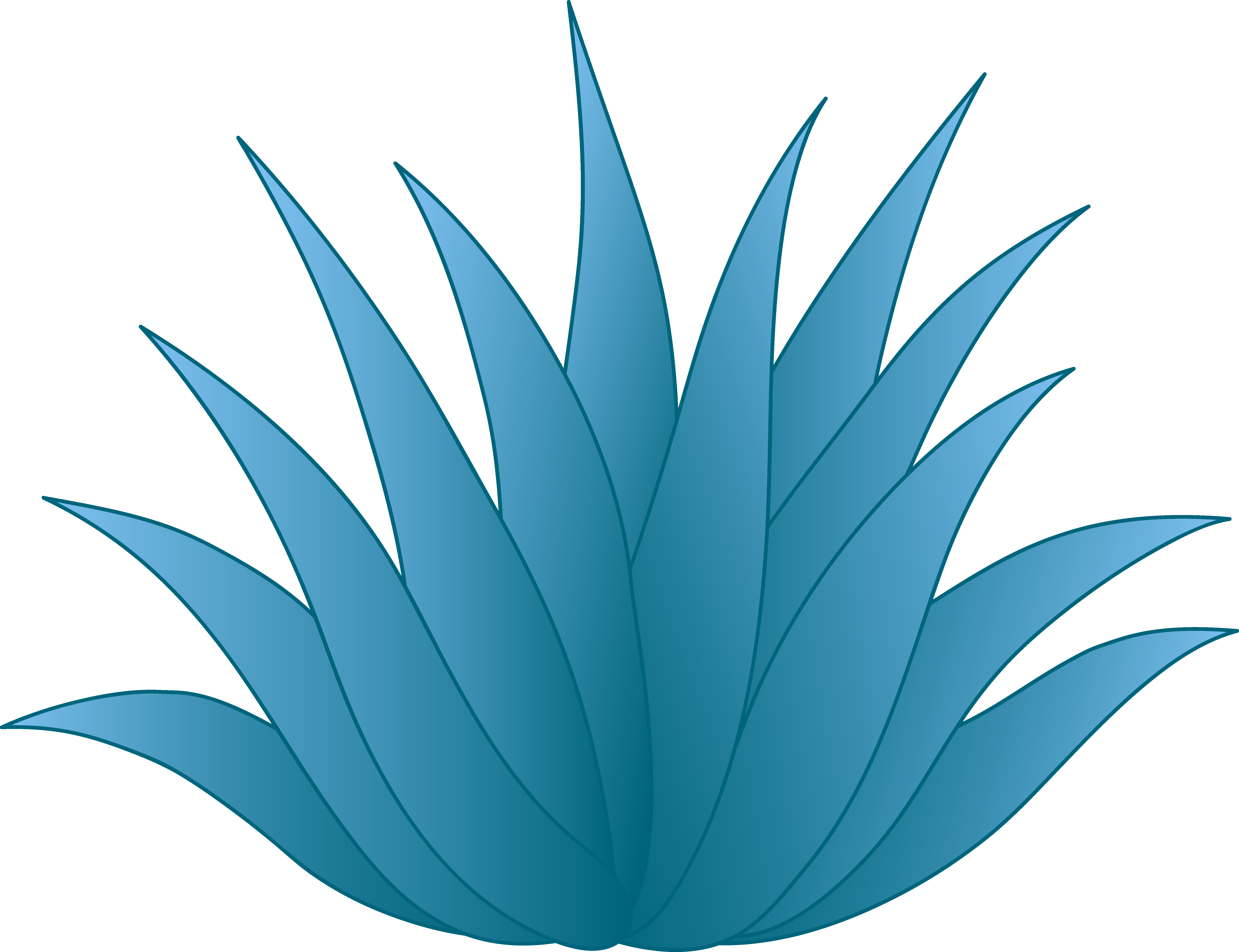 Agave clipart #2, Download drawings