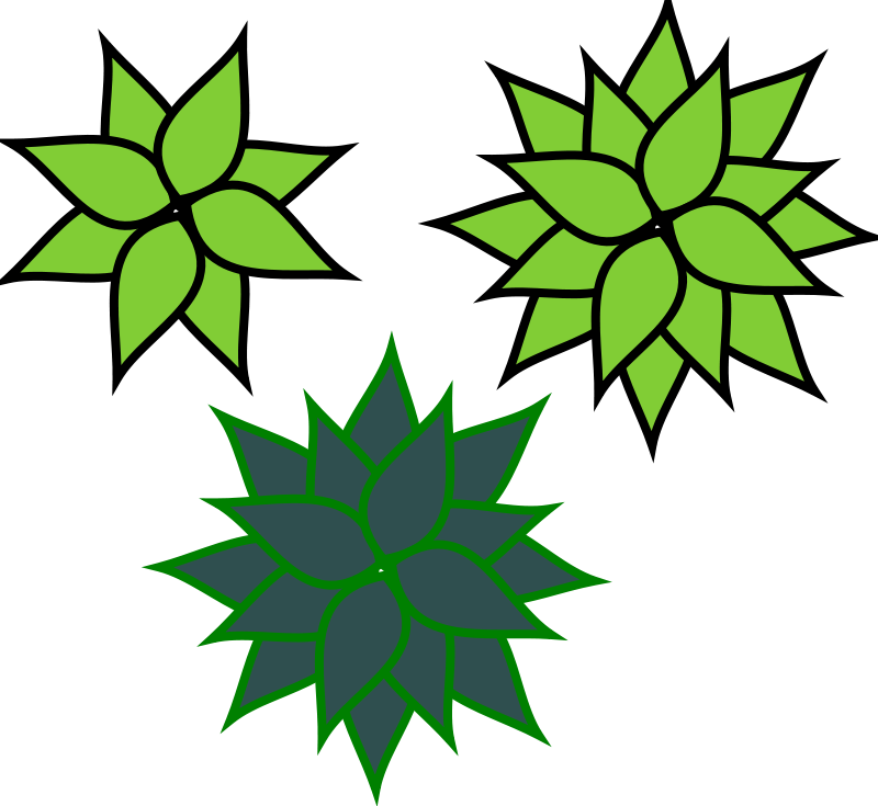 Agave clipart #7, Download drawings