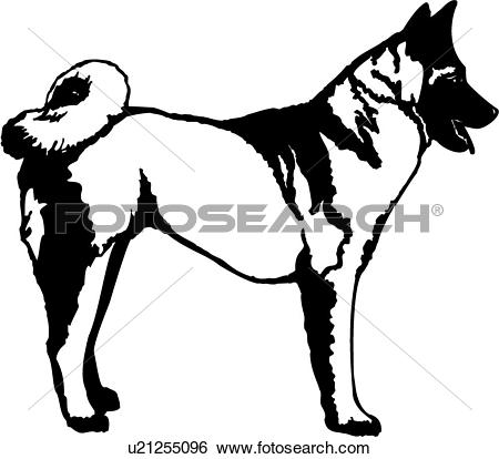 American Akita clipart #13, Download drawings