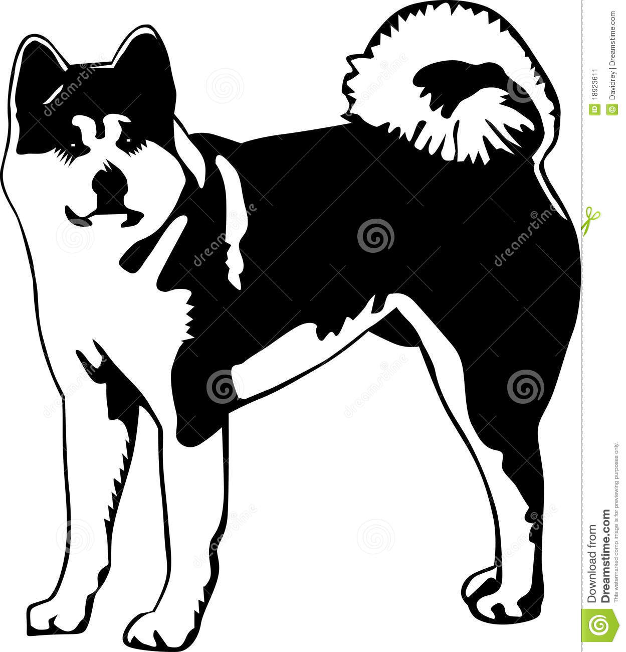 American Akita clipart #19, Download drawings