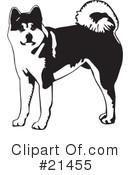 Akita clipart #11, Download drawings