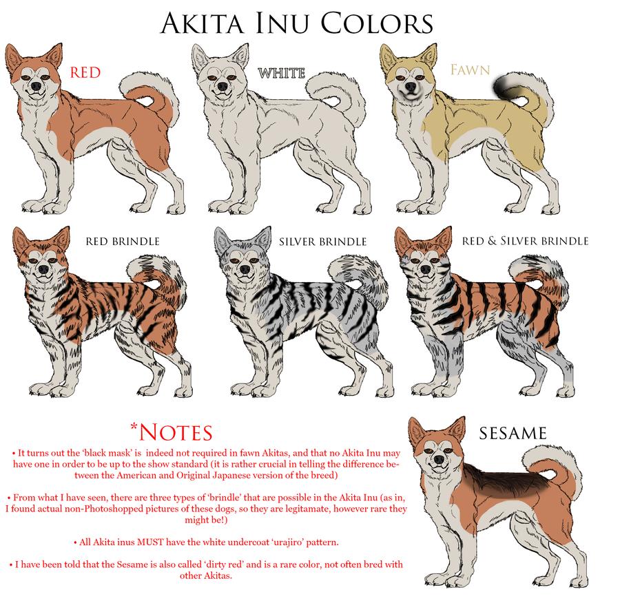Akita coloring #9, Download drawings